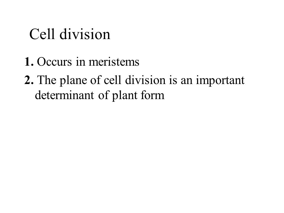 Cell division 1. Occurs in meristems 2. The plane of cell division is an important determinant of plant form