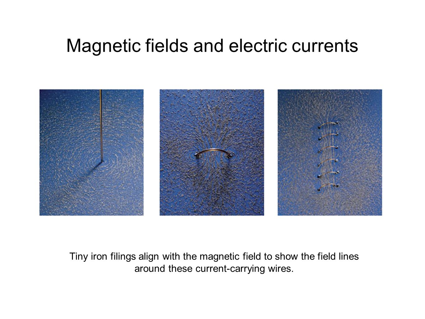 Magnetic fields and electric currents Tiny iron filings align with the magnetic field to show the field lines around these current-carrying wires.
