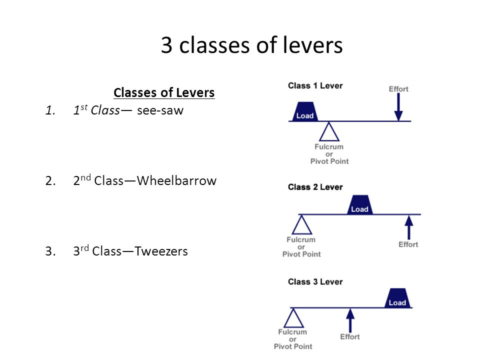 3 classes of levers Classes of Levers 1.1 st Class— see-saw 2.2 nd Class—Wheelbarrow 3.3 rd Class—Tweezers