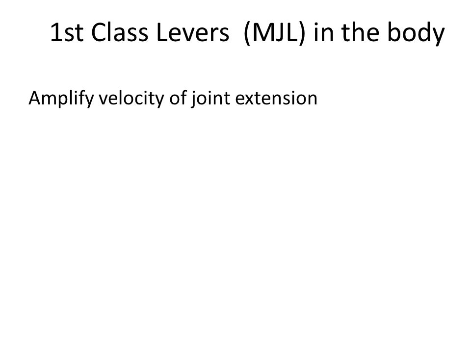 1st Class Levers (MJL) in the body Amplify velocity of joint extension