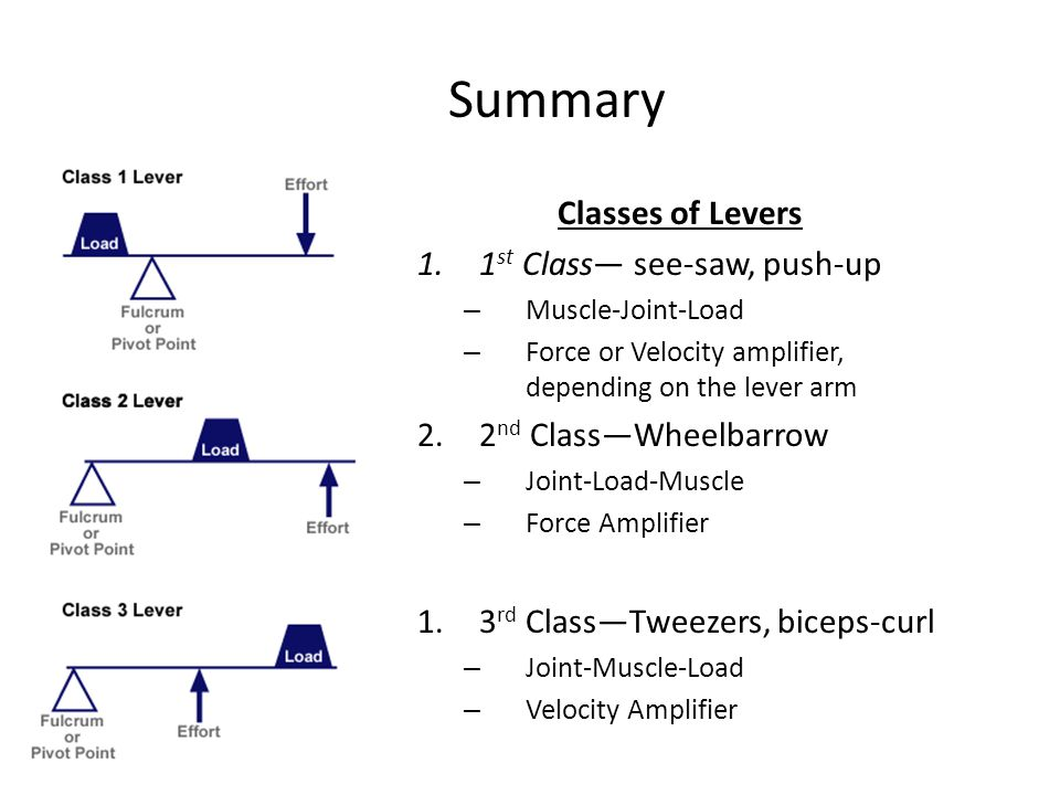 Summary Classes of Levers 1.1 st Class— see-saw, push-up – Muscle-Joint-Load – Force or Velocity amplifier, depending on the lever arm 2.2 nd Class—Wheelbarrow – Joint-Load-Muscle – Force Amplifier 1.3 rd Class—Tweezers, biceps-curl – Joint-Muscle-Load – Velocity Amplifier