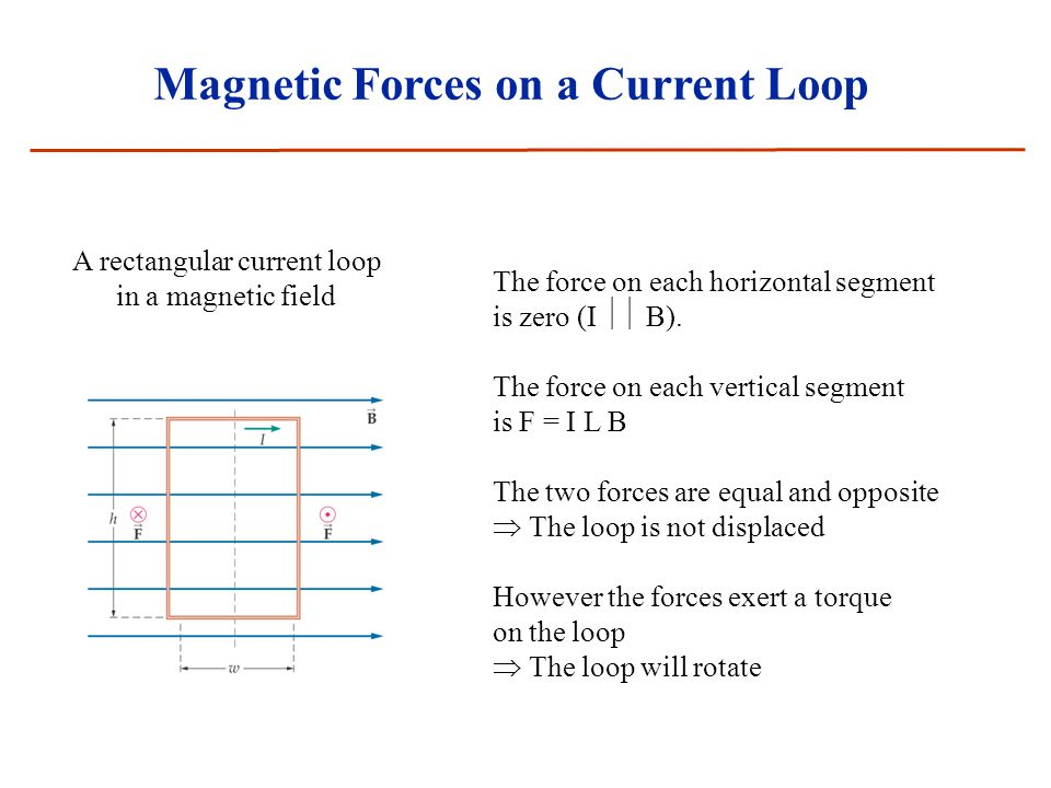 Magnetic Forces on a Current Loop A rectangular current loop in a magnetic field The force on each horizontal segment is zero (I  B). The force on e