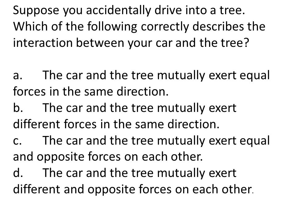 Suppose you accidentally drive into a tree.