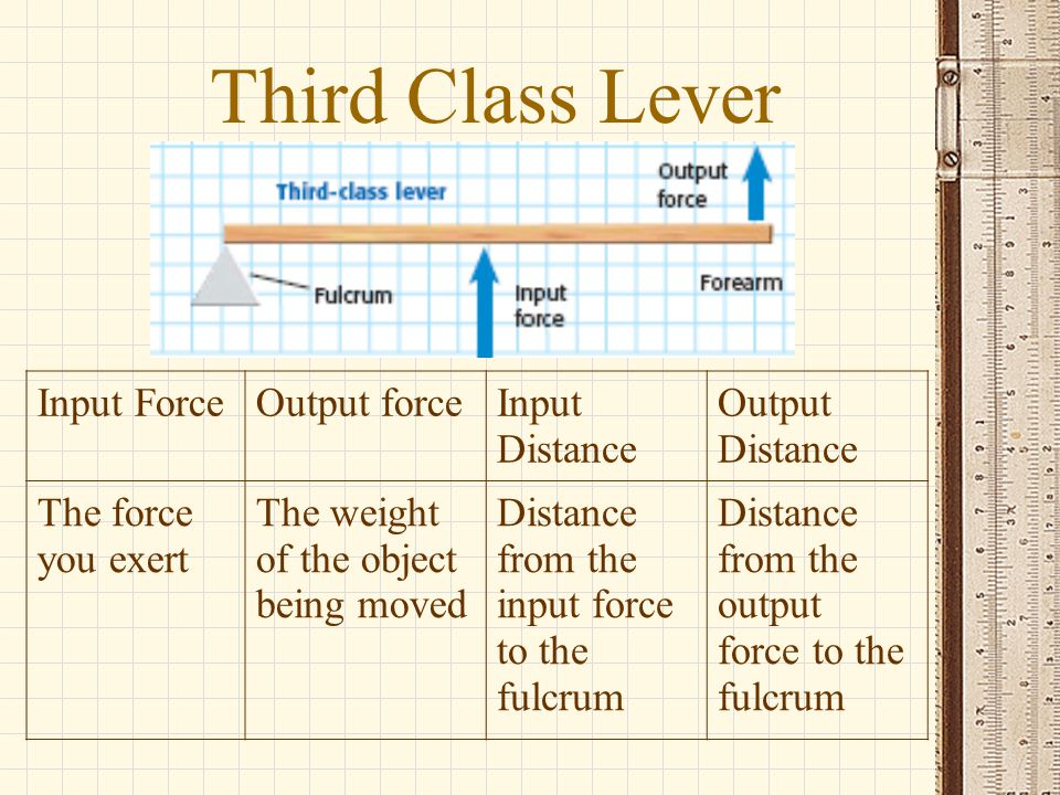Third Class Lever Input ForceOutput forceInput Distance Output Distance The force you exert The weight of the object being moved Distance from the inp