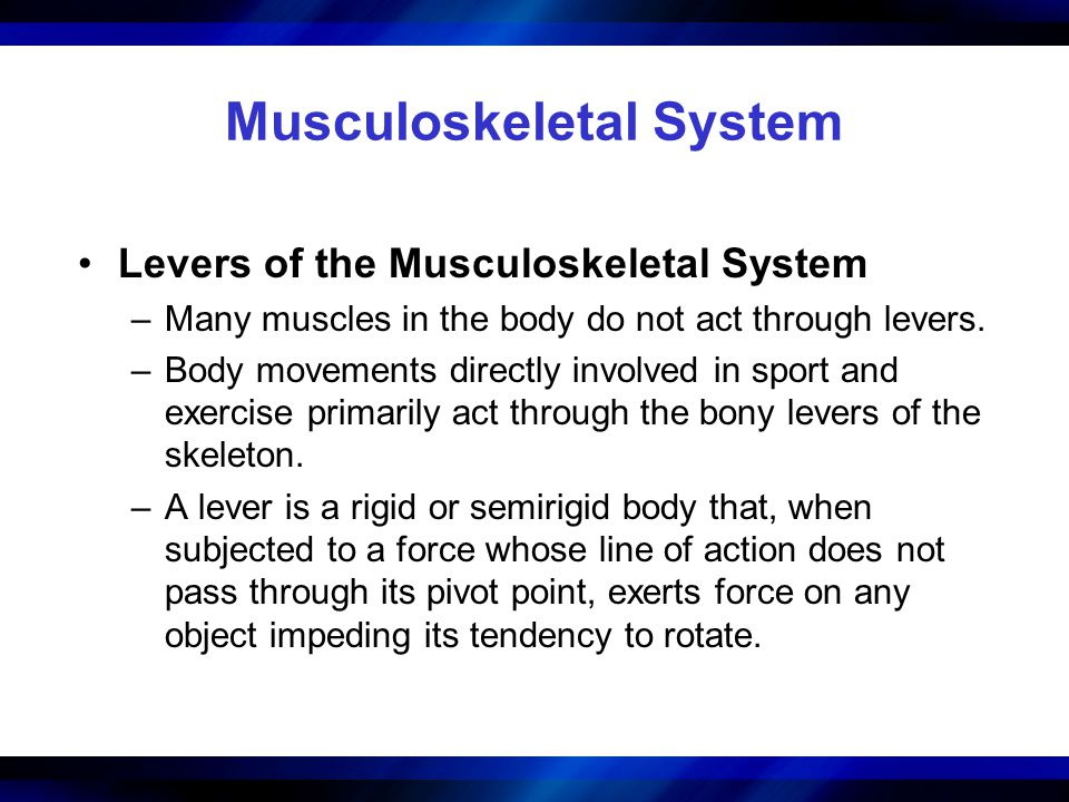 Musculoskeletal System Levers of the Musculoskeletal System –Many muscles in the body do not act through levers. –Body movements directly involved in