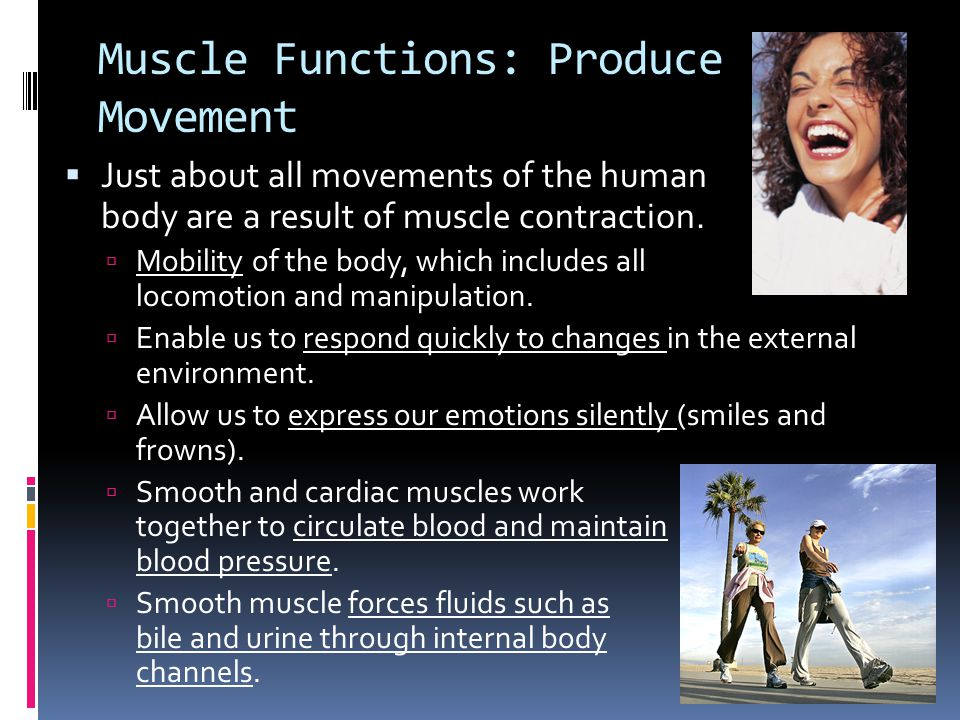 Muscle Functions: Produce Movement  Just about all movements of the human body are a result of muscle contraction.