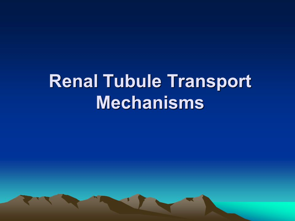Renal Tubule Transport Mechanisms