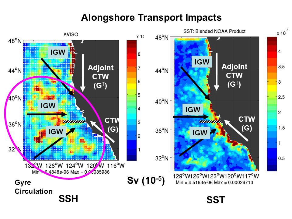 Sv (10 -5 ) Alongshore Transport Impacts IGW CTW (G) Adjoint CTW (G T ) CTW (G) Adjoint CTW (G T ) SSH SST Gyre Circulation