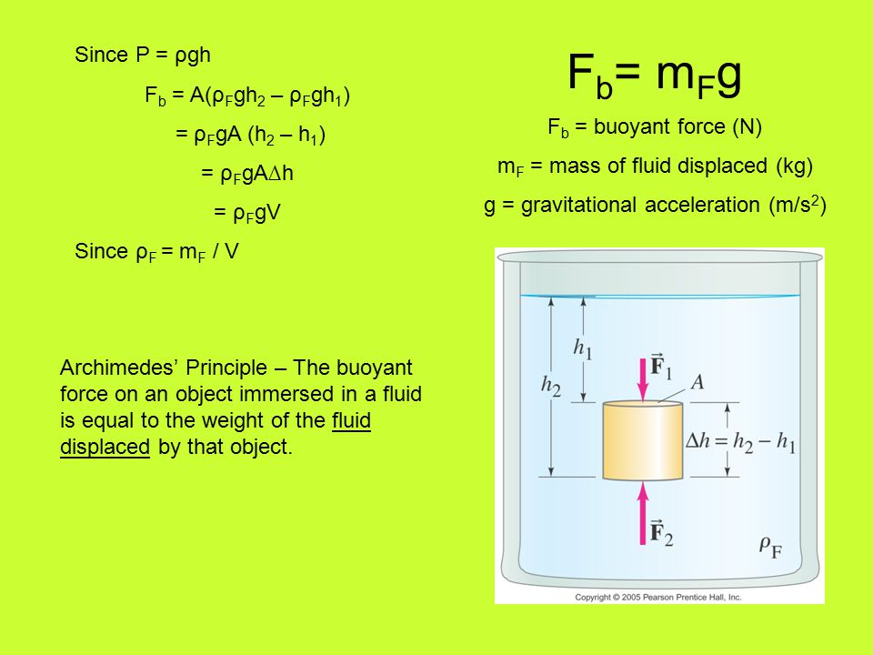Since P = ρgh F b = A(ρ F gh 2 – ρ F gh 1 ) = ρ F gA (h 2 – h 1 ) = ρ F gA∆h = ρ F gV Since ρ F = m F / V F b = m F g F b = buoyant force (N) m F = mass of fluid displaced (kg) g = gravitational acceleration (m/s 2 ) Archimedes' Principle – The buoyant force on an object immersed in a fluid is equal to the weight of the fluid displaced by that object.