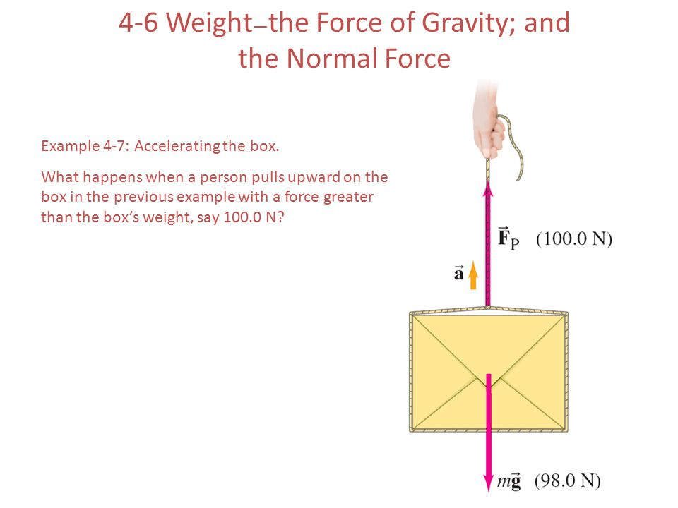 4-6 Weight — the Force of Gravity; and the Normal Force Example 4-7: Accelerating the box. What happens when a person pulls upward on the box in the p