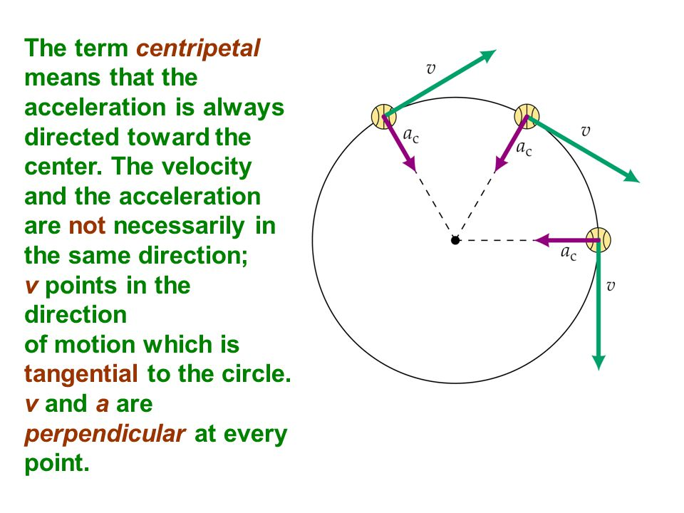 The term centripetal means that the acceleration is always directed toward the center. The velocity and the acceleration are not necessarily in the sa