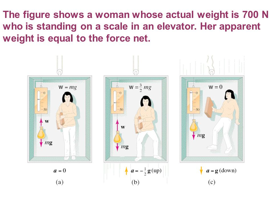The figure shows a woman whose actual weight is 700 N who is standing on a scale in an elevator. Her apparent weight is equal to the force net.