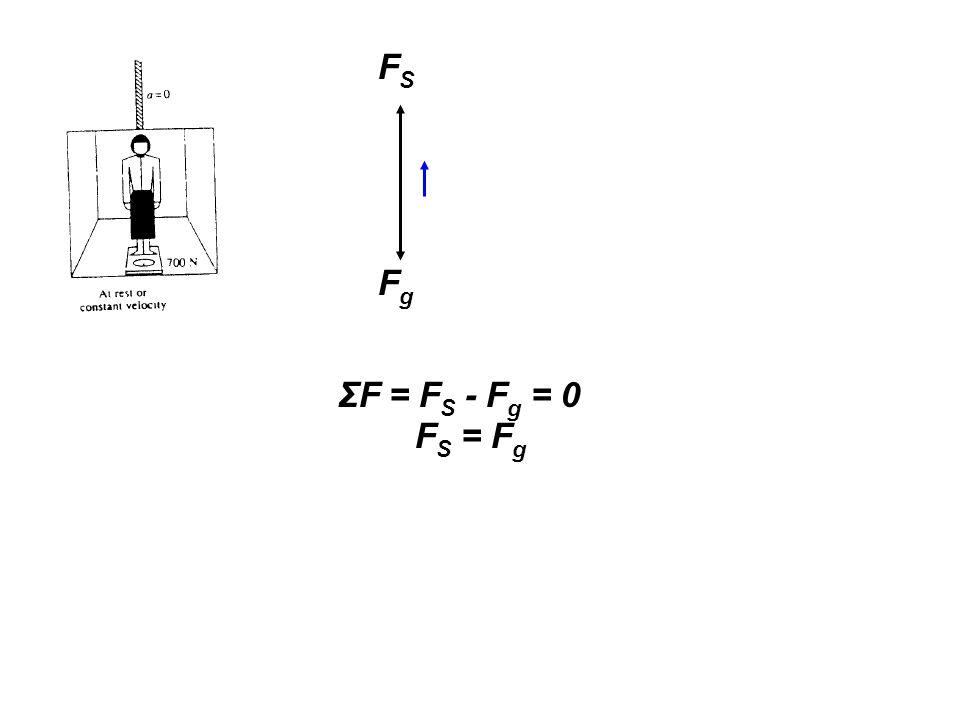 ΣF = F S - F g = 0 F S = F g FSFS FgFg