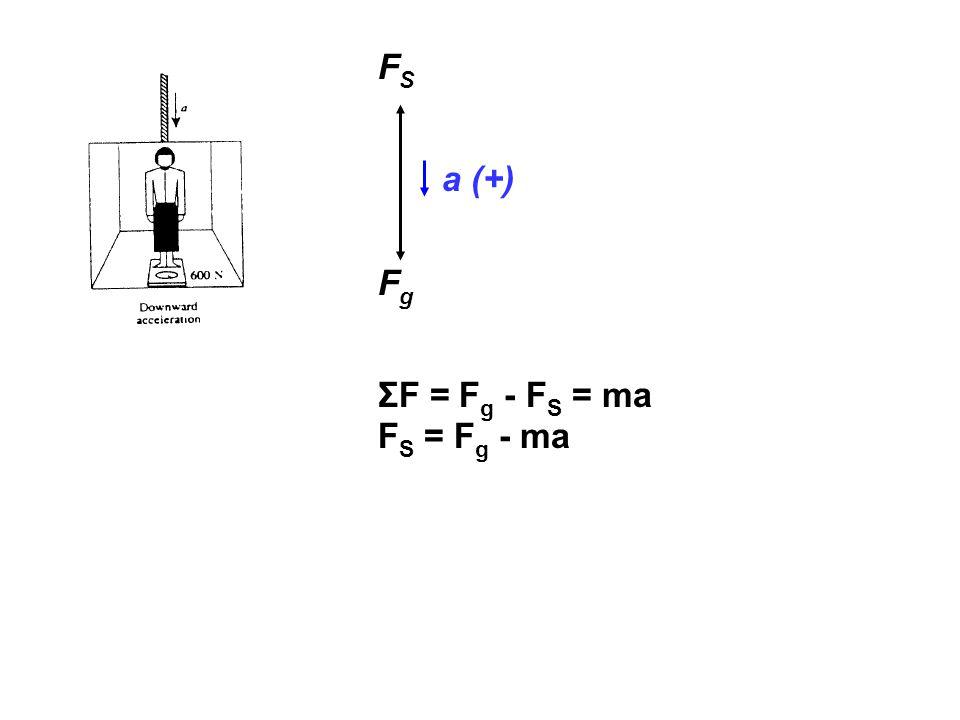 FSFS FgFg a (+) ΣF = F g - F S = ma F S = F g - ma
