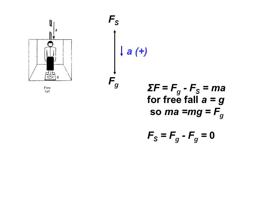 FSFS FgFg a (+) ΣF = F g - F S = ma for free fall a = g so ma =mg = F g F S = F g - F g = 0