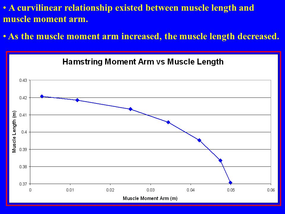 A curvilinear relationship existed between muscle length and muscle moment arm.