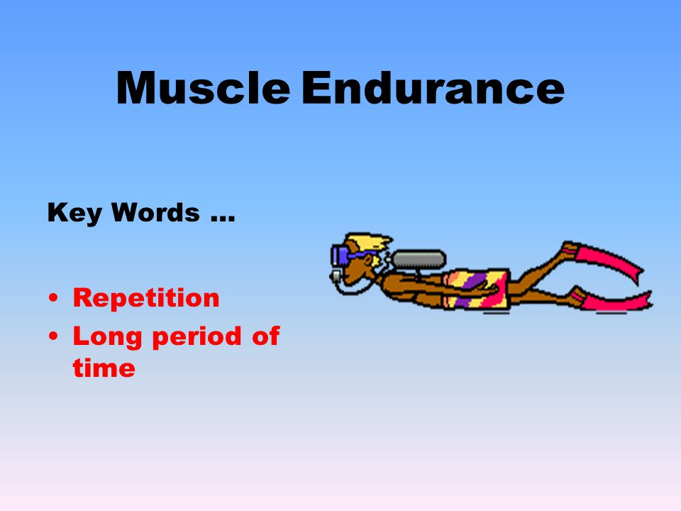 Muscle Endurance Key Words … Repetition Long period of time