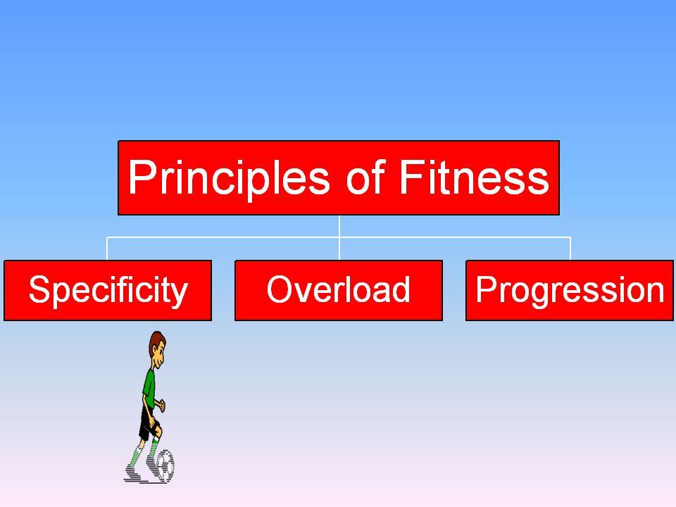 Chart of principles