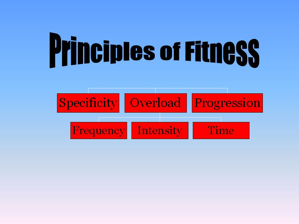 Principles of Fitness 2
