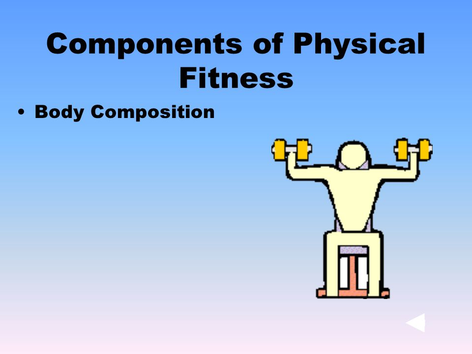 Body Composition Components of Physical Fitness