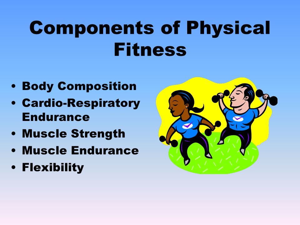 Body Composition Cardio-Respiratory Endurance Muscle Strength Muscle Endurance Flexibility Components of Physical Fitness