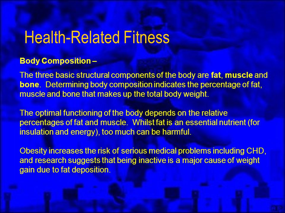 Health-Related Fitness Body Composition – The three basic structural components of the body are fat, muscle and bone.