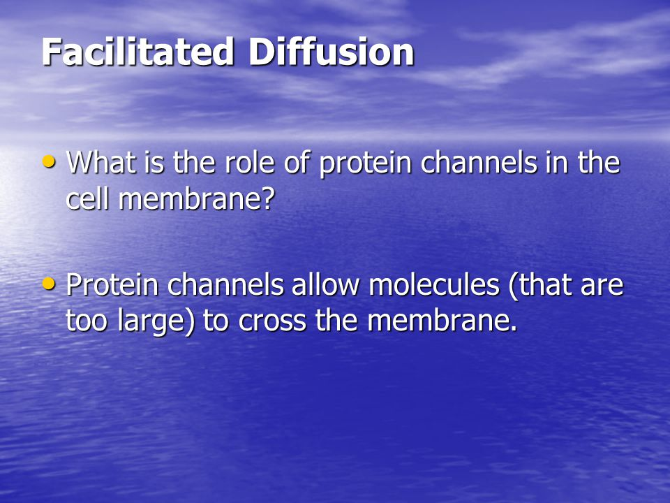 Facilitated Diffusion What is the role of protein channels in the cell membrane? What is the role of protein channels in the cell membrane? Protein ch