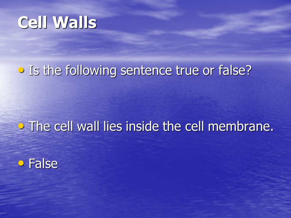 Cell Walls Is the following sentence true or false? Is the following sentence true or false? The cell wall lies inside the cell membrane. The cell wal