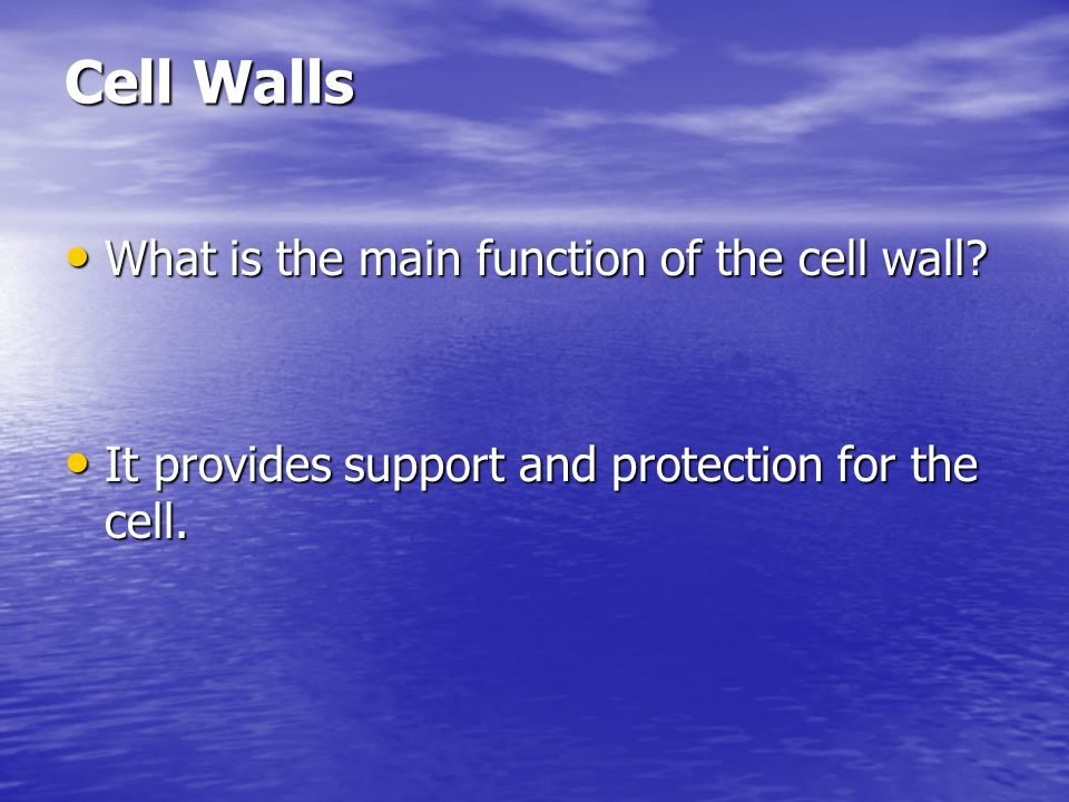 Cell Walls What are plant cell walls mostly made of.