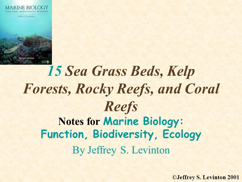 15 Sea Grass Beds, Kelp Forests, Rocky Reefs, and Coral Reefs Notes for Marine Biology: Function, Biodiversity, Ecology By Jeffrey S.