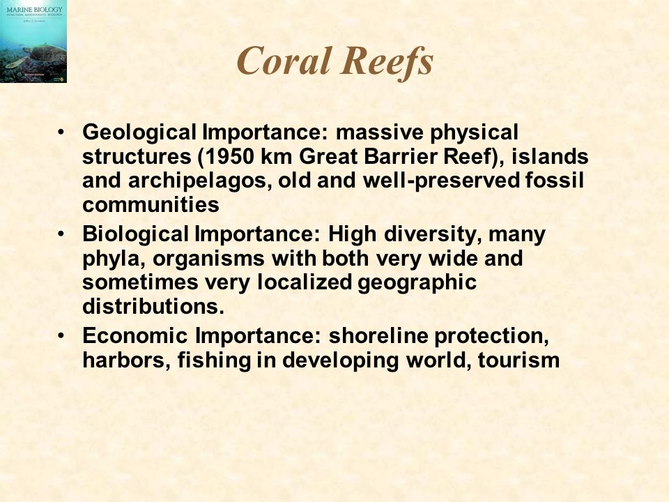 Coral Reefs Geological Importance: massive physical structures (1950 km Great Barrier Reef), islands and archipelagos, old and well-preserved fossil communities Biological Importance: High diversity, many phyla, organisms with both very wide and sometimes very localized geographic distributions.