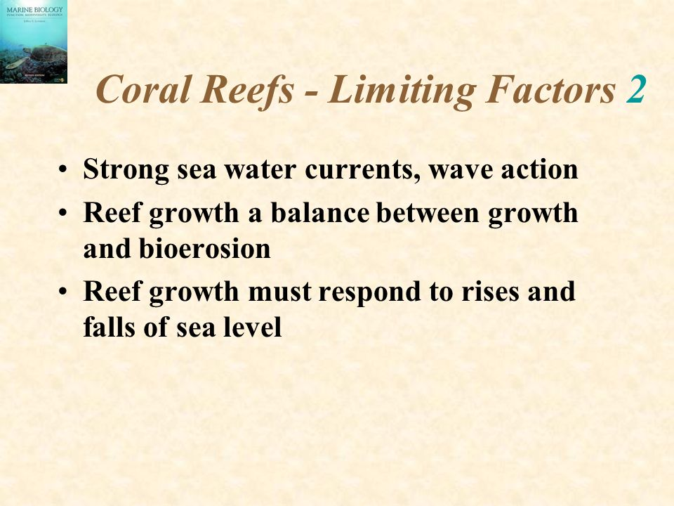 Coral Reefs - Limiting Factors 2 Strong sea water currents, wave action Reef growth a balance between growth and bioerosion Reef growth must respond to rises and falls of sea level