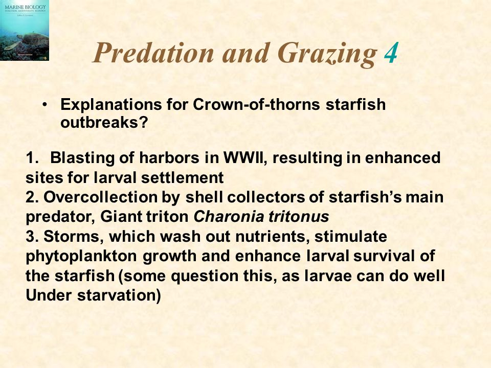 Predation and Grazing 4 Explanations for Crown-of-thorns starfish outbreaks.
