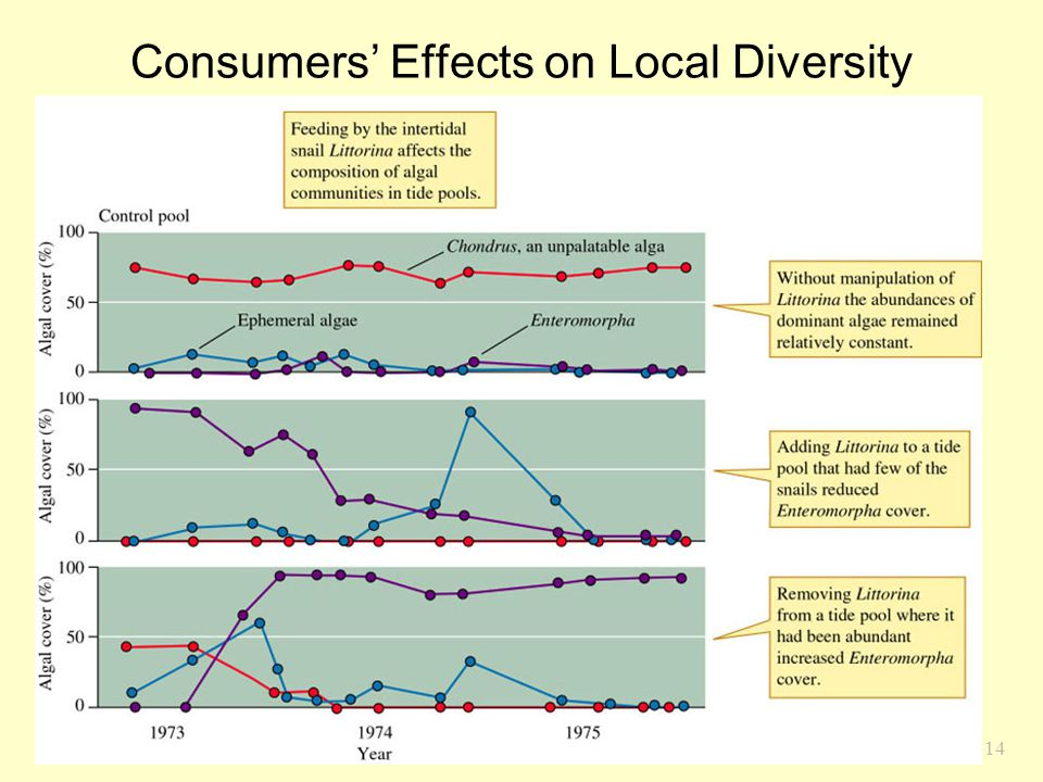 14 Consumers' Effects on Local Diversity