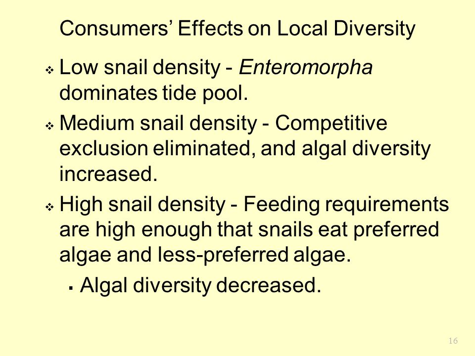 16 Consumers' Effects on Local Diversity  Low snail density - Enteromorpha dominates tide pool.  Medium snail density - Competitive exclusion elimin