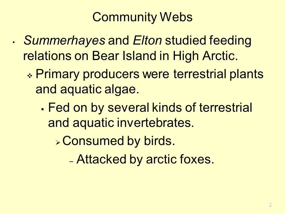 2 Community Webs Summerhayes and Elton studied feeding relations on Bear Island in High Arctic.  Primary producers were terrestrial plants and aquati