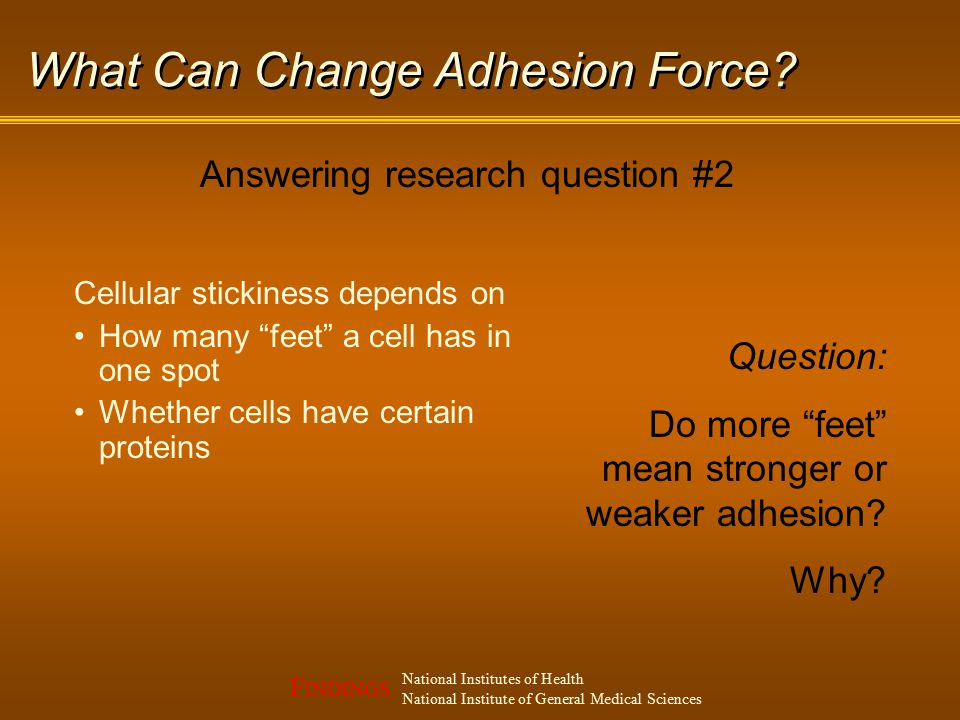 F INDINGS National Institutes of Health National Institute of General Medical Sciences What Can Change Adhesion Force.