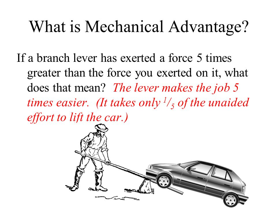 If a branch lever has exerted a force 5 times greater than the force you exerted on it, what does that mean? The lever makes the job 5 times easier. (