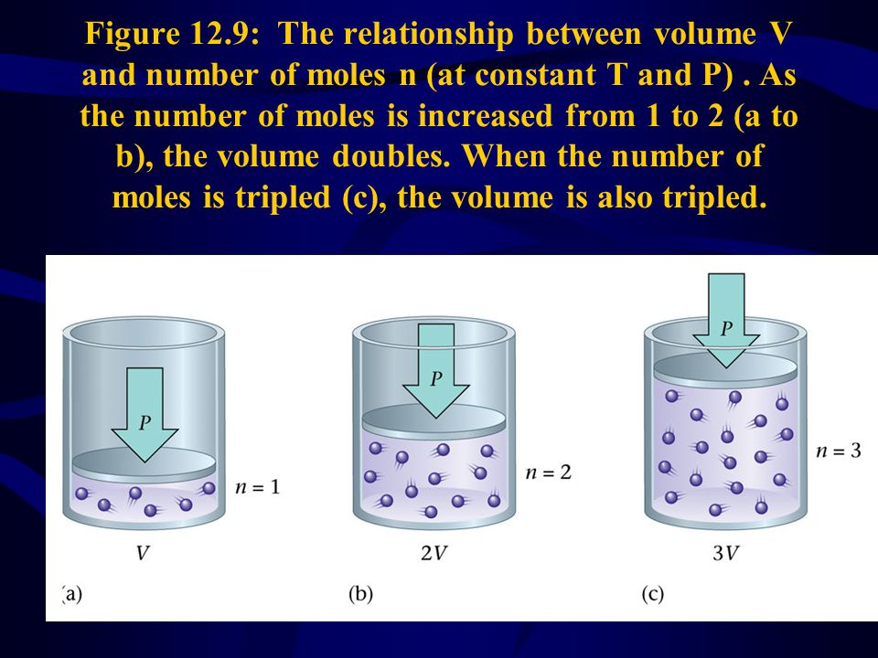 43 Figure 12.9: The relationship between volume V and number of moles n (at constant T and P).