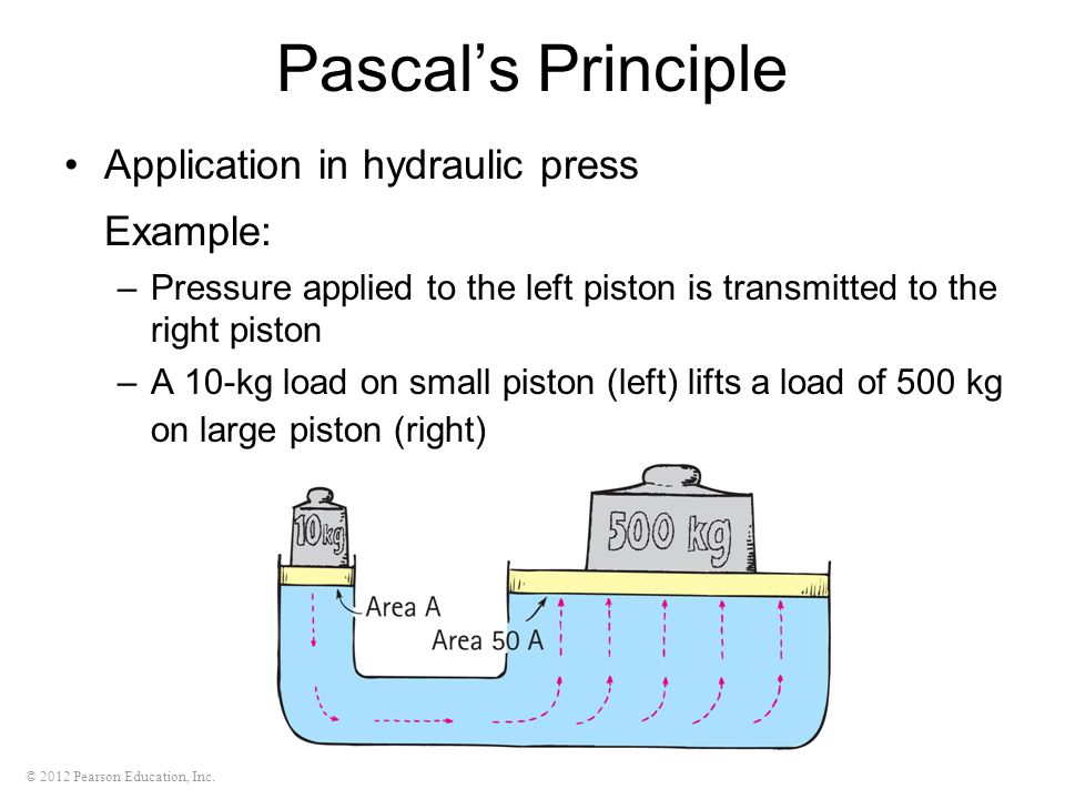 © 2012 Pearson Education, Inc. Pascal's Principle Application in hydraulic press Example: –Pressure applied to the left piston is transmitted to the r