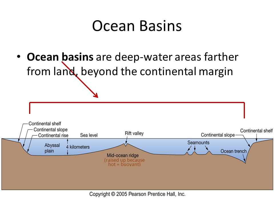 Ocean Basins Ocean basins are deep-water areas farther from land, beyond the continental margin (raised up because hot = buoyant)