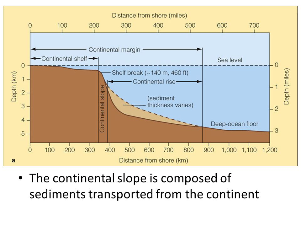The continental slope is composed of sediments transported from the continent