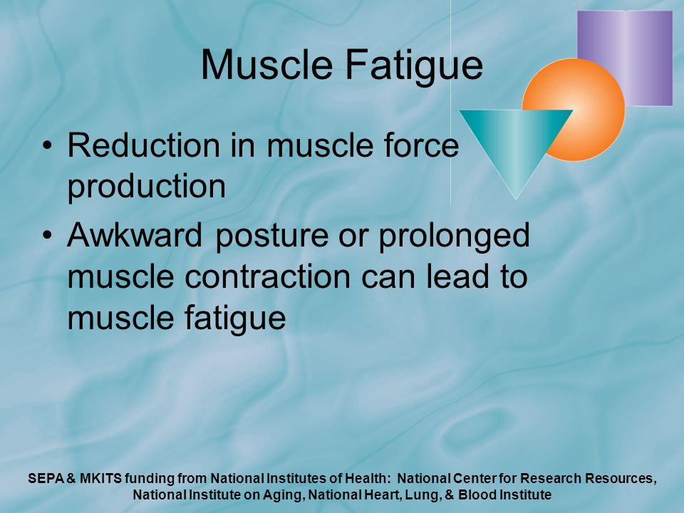SEPA & MKITS funding from National Institutes of Health: National Center for Research Resources, National Institute on Aging, National Heart, Lung, & Blood Institute Muscle Fatigue Reduction in muscle force production Awkward posture or prolonged muscle contraction can lead to muscle fatigue