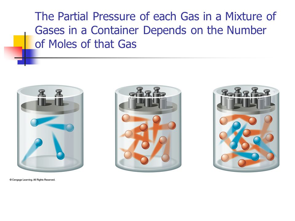 The Partial Pressure of each Gas in a Mixture of Gases in a Container Depends on the Number of Moles of that Gas