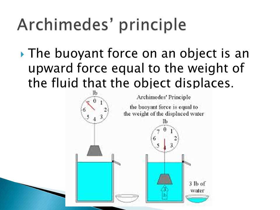  The buoyant force on an object is an upward force equal to the weight of the fluid that the object displaces.