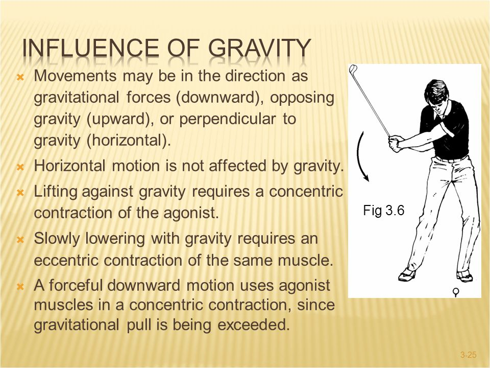 3-25  Movements may be in the direction as gravitational forces (downward), opposing gravity (upward), or perpendicular to gravity (horizontal).  Ho