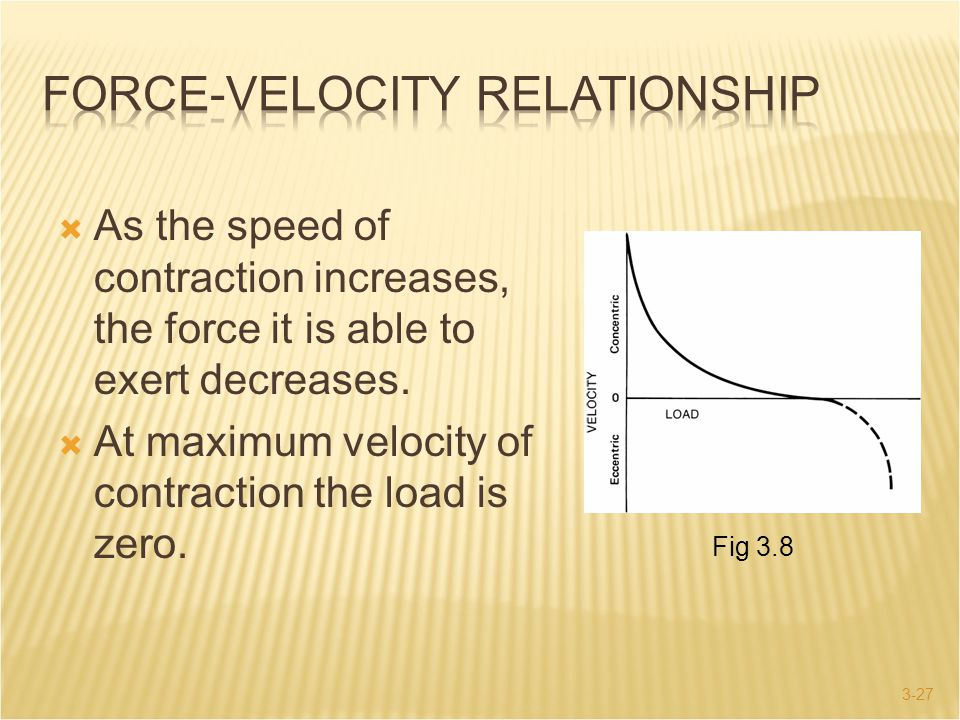 3-27  As the speed of contraction increases, the force it is able to exert decreases.  At maximum velocity of contraction the load is zero. Fig 3.8
