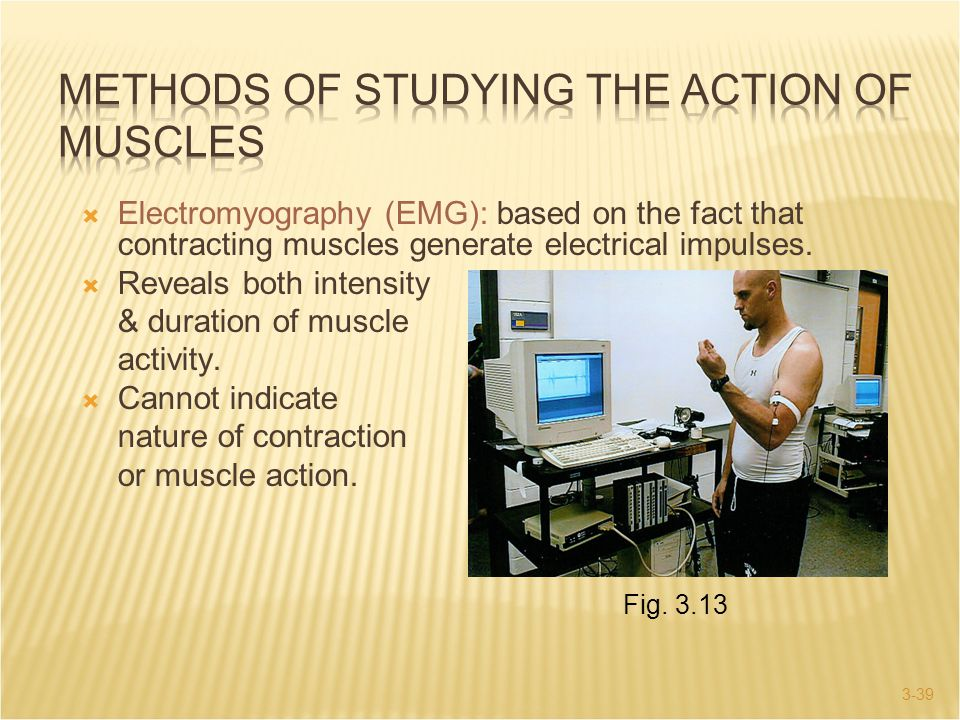 3-39  Electromyography (EMG): based on the fact that contracting muscles generate electrical impulses.  Reveals both intensity & duration of muscle