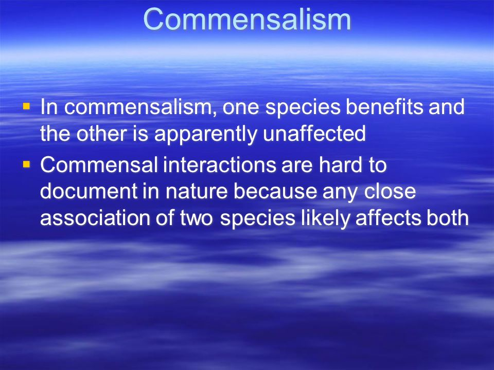 Commensalism  In commensalism, one species benefits and the other is apparently unaffected  Commensal interactions are hard to document in nature because any close association of two species likely affects both  In commensalism, one species benefits and the other is apparently unaffected  Commensal interactions are hard to document in nature because any close association of two species likely affects both