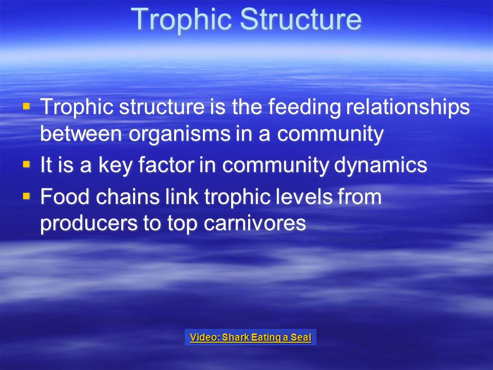 Trophic Structure  Trophic structure is the feeding relationships between organisms in a community  It is a key factor in community dynamics  Food chains link trophic levels from producers to top carnivores  Trophic structure is the feeding relationships between organisms in a community  It is a key factor in community dynamics  Food chains link trophic levels from producers to top carnivores Video: Shark Eating a Seal Video: Shark Eating a Seal